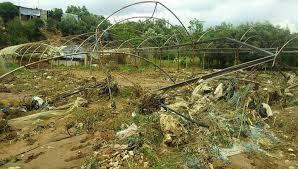 بسبب الرياح العاتية أضرار بالمحاصيل والزراعات المحمية في اللاذقية.. والمؤسسات الخدمية تعيد تأهيل الشبكات المتضررة