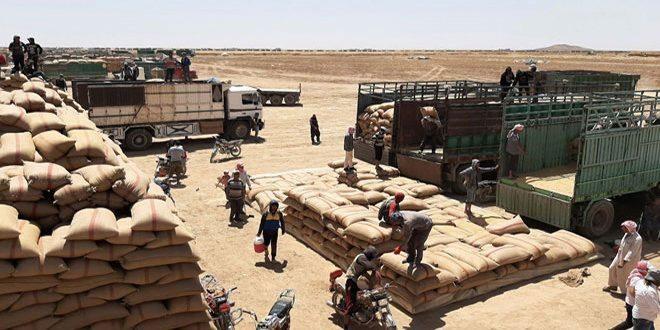لجنة السياسات الاقتصادية: النهوض بالقطاع الزراعي بكل مكوّناته