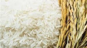 العراق يتوقع إنتاجاً وفيراً من الأرز