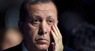 نظام أردوغان يعيد اعتقال ناشط حقوقي رغم تبرئته