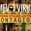 """تجنب """"أفلام الفيروسات والأوبئة"""""""